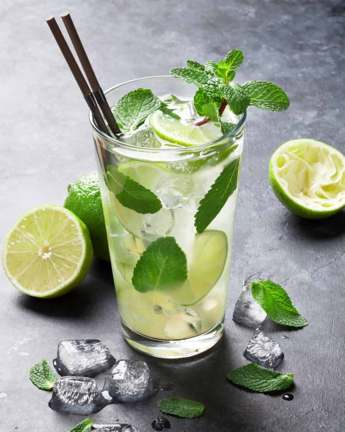 Mojito cocktail in a tall glass with mint and lime.